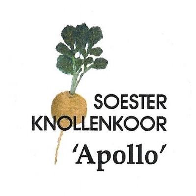 Soester Knollenkoor Apollo